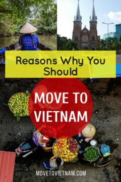 Are you planning to move abroad but still undecided where to? Find out why you should move to Vietnam, or the cost of living in Vietnam. Read up this article about moving to Vietnam. #movetovietnam #movingtovietnam #reasonstomovetovietnam #costoflivinginvietnam #expatlifeinvietnam