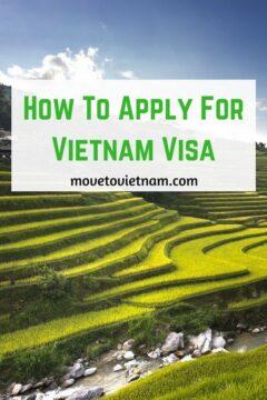 apply for vietnam visa, how to apply for a vietnamese visa, visa vietnam, types of visas in vietnam, how to apply for vietnam visa in an embassy, how to apply vietnam visa online, should I use a travel agency for visa to vietnam